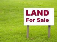 Home for sale: * New Statenville Hwy., Valdosta, GA 31601