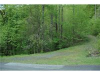 Home for sale: 000 Deer Trail Dr., Burnsville, NC 28714