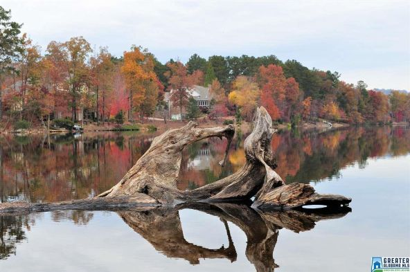 701 Highland Lakes Cove, Birmingham, AL 35242 Photo 34