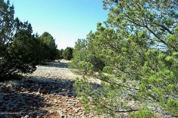 7217 N. Audrey Way, Williams, AZ 86046 Photo 14