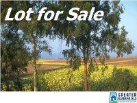 Home for sale: 5964 Whitehouse Rd., Jasper, AL 35501