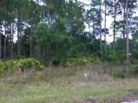 Home for sale: Lucy S. Lot 6 & 7 Ln., Panacea, FL 32346