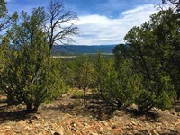 Home for sale: 5b4 Wildflower Ln., Pecos, NM 87552