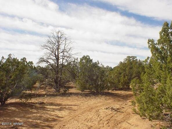 1b N. 8690, Concho, AZ 85924 Photo 27