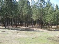 Home for sale: Lot B Lake Roosevelt/Gifford Ferry, Inchelium, WA 99138