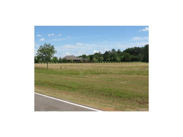 1a Vaughn Crossing Rd., Pike Road, AL 36064 Photo 6
