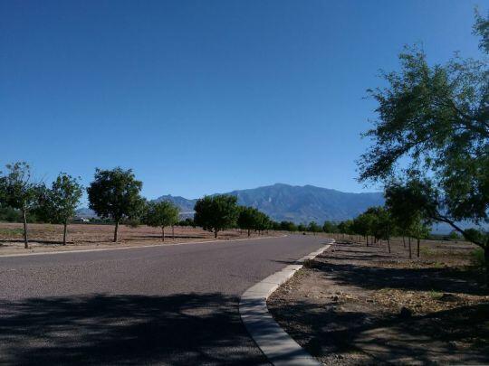 6650 W. Palo Verde Ln., Pima, AZ 85543 Photo 4