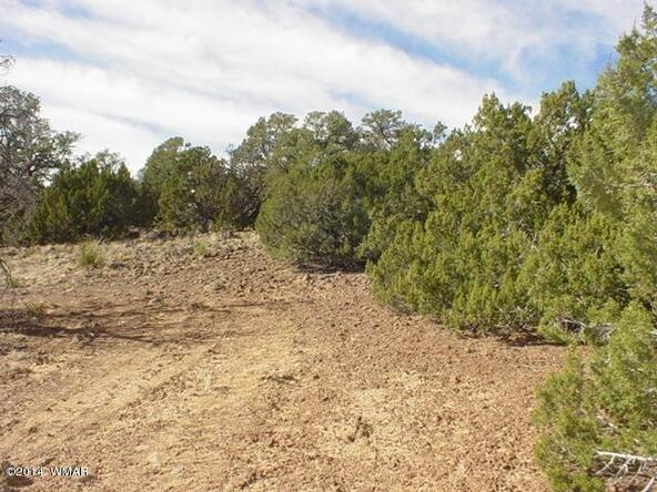1b N. 8690, Concho, AZ 85924 Photo 17