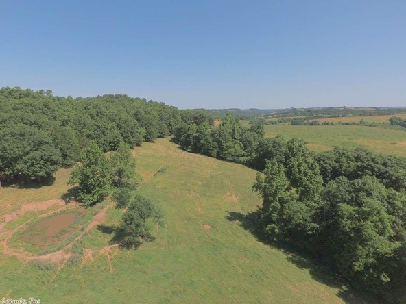 4400 Campbell Rd., Marshall, AR 72650 Photo 4