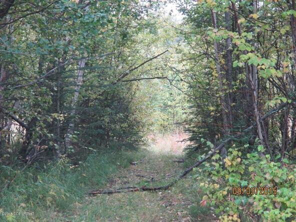 3585 N. Plover Cir., Wasilla, AK 99654 Photo 4