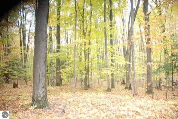 19 Balsam Trail, Kewadin, MI 49648 Photo 3
