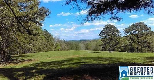 2641 Alta Glen Dr., Vestavia Hills, AL 35243 Photo 3