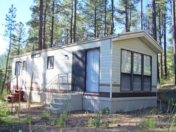 10 County Rd. 2153, Alpine, AZ 85920 Photo 8
