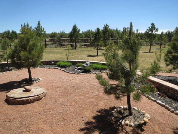 2295 Bison Ranch Trail, Overgaard, AZ 85933 Photo 64