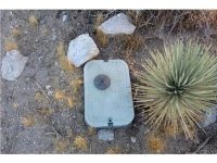 Home for sale: 0 Locust Rd., Pinon Hills, CA 92372