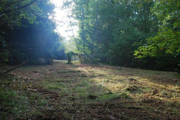 70 County 944 Rd., Mentone, AL 35984 Photo 75