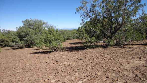 514 Westwood Ranch Lot 514, Seligman, AZ 86337 Photo 5