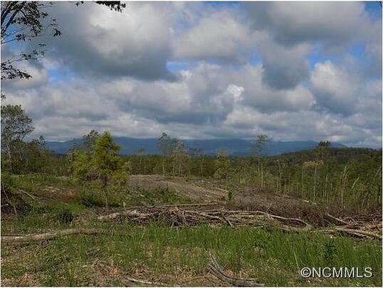 00 Polk County Line Rd., Rutherfordton, NC 28139 Photo 10