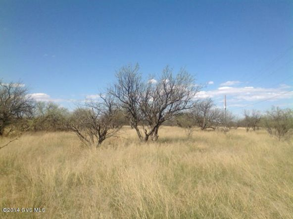 16005 W. Ranger Rd., Arivaca, AZ 85601 Photo 9
