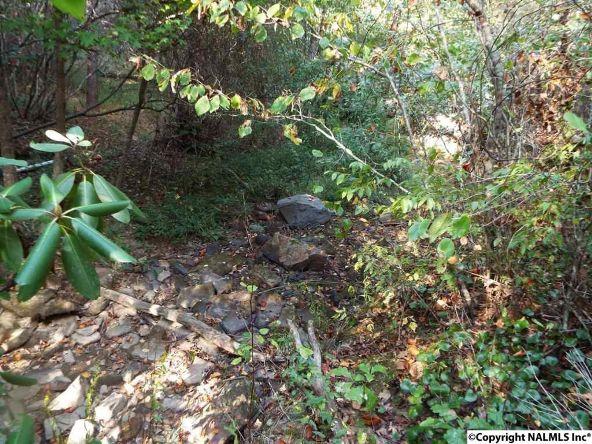 1654 County Rd. 641, Mentone, AL 35984 Photo 34