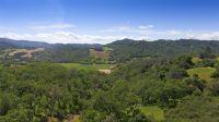 Home for sale: 3462 E. Sage Canyon Rd., Saint Helena, CA 94574