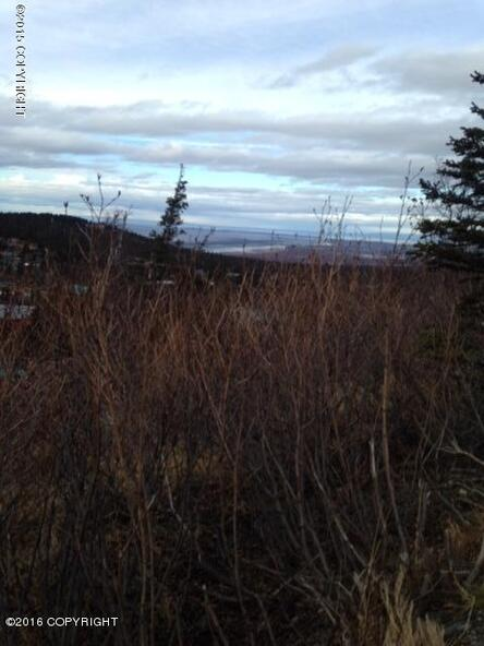 L9 B2 Kings Way Dr., Anchorage, AK 99516 Photo 8