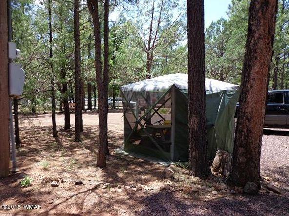 3530 Petes Retreat, Lakeside, AZ 85929 Photo 9