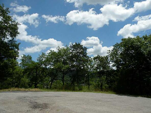 1 Deer Run Ln., Holiday Island, AR 72631 Photo 10