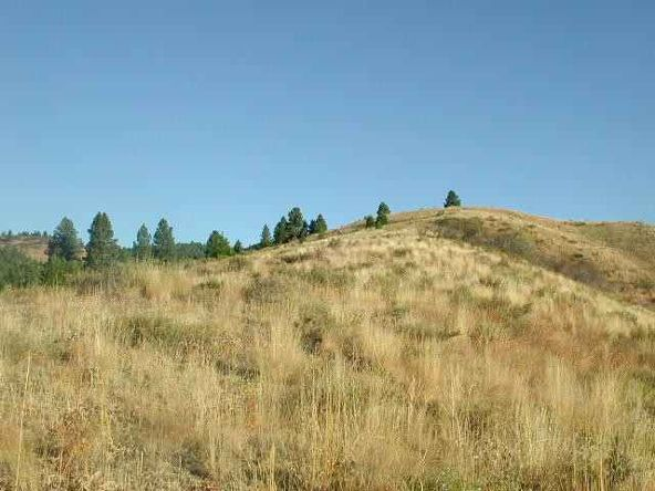 Lot 110 Gold Fork Ridge Rd., Boise, ID 83716 Photo 2