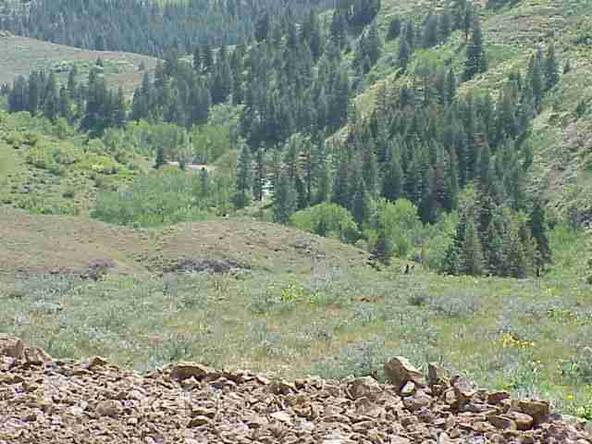 Tbd Middle Fork, Council, ID 83612 Photo 3