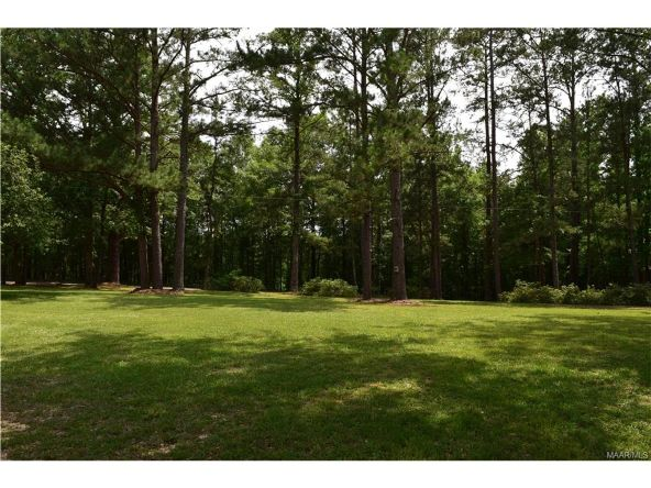 3641 Julian Town Rd., Letohatchee, AL 36047 Photo 18