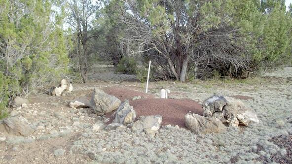5665 N. Santa Fe Rd., Williams, AZ 86046 Photo 7