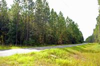 Home for sale: Tbd South East S.E. 36th Ave., Starke, FL 32091