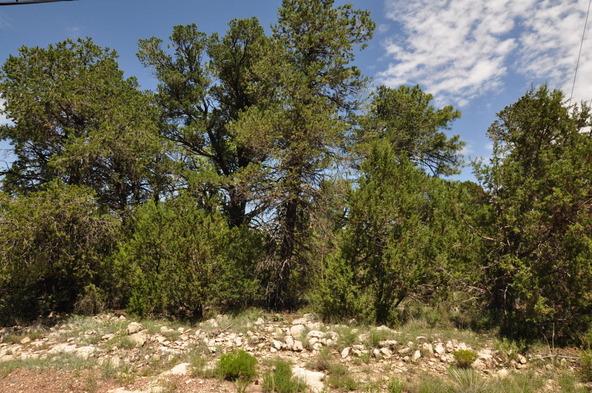 3146 Ranch Rd., Overgaard, AZ 85933 Photo 7