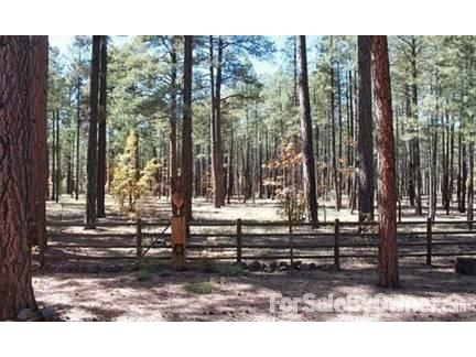 2668 Timber Ridge Ln., Pinetop, AZ 85935 Photo 2