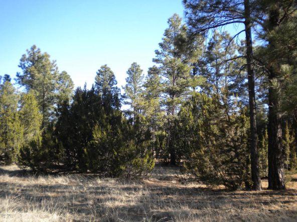 1982 Rustling Pine Dr., Overgaard, AZ 85933 Photo 2