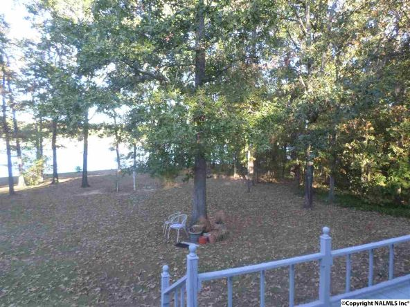 375 County Rd. 625, Cedar Bluff, AL 35959 Photo 16