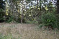Home for sale: Bell Hole Loop #41, Crescent City, CA 95531