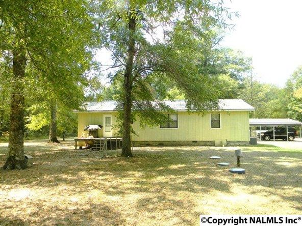 668 Jones Chapel Rd., Piedmont, AL 36272 Photo 34