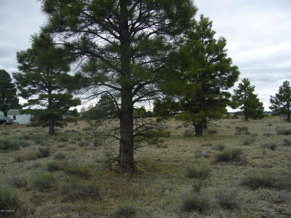 10558 E. White Horse Lake, Parks, AZ 86018 Photo 28