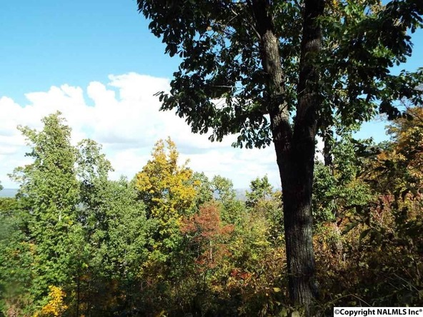 11 S. County Rd. 89, Mentone, AL 35984 Photo 19