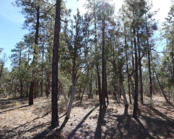 1090 W. Sadler Ln., Lakeside, AZ 85929 Photo 7