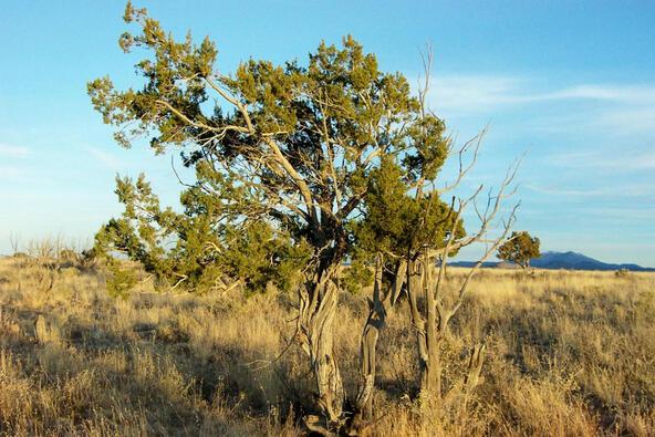 6218 S. Prairie Grass Ln., Williams, AZ 86046 Photo 7