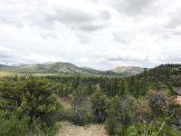 Home for sale: 1803 Bridge Park Pl., Prescott, AZ 86305