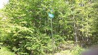 Home for sale: Oak, Sugarloaf, PA 18249