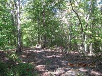 Home for sale: 216 Jubal Reeves Cir., Mount Gilead, NC 27306