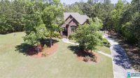 Home for sale: 313 Creekside Cove, Chelsea, AL 35186