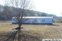 Home for sale: 3085 County Rd. 43, Cedar Bluff, AL 35959