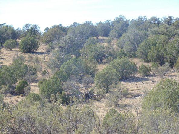 57154 N. Bridge Canyon Parkway, Seligman, AZ 86337 Photo 3