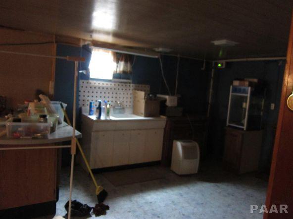 3354 N. Us Hwy. 24, Astoria, IL 61501 Photo 25
